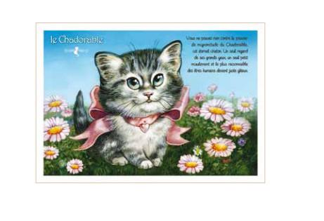Carte Postale Le Chadorable